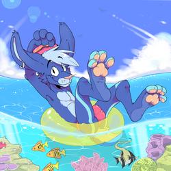 C// Summer Waters