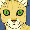 avatar of Chiffon