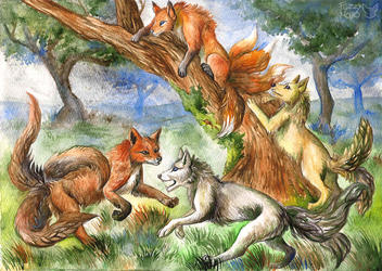 Playing foxes