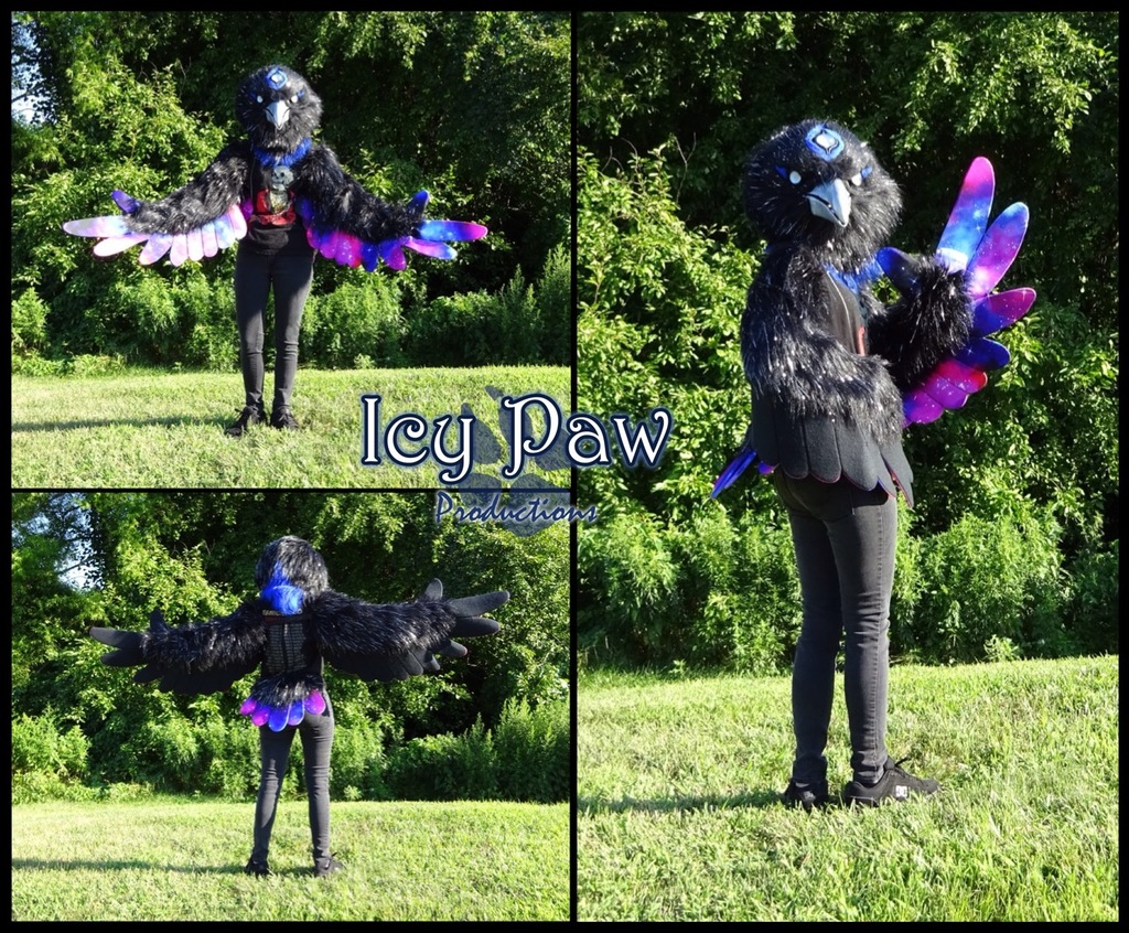 Most recent image: Galaxy raven