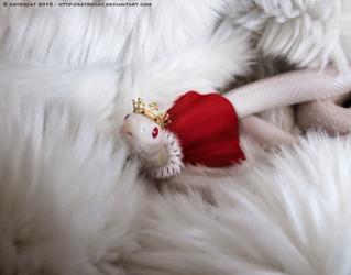 Cute Prince Snoot