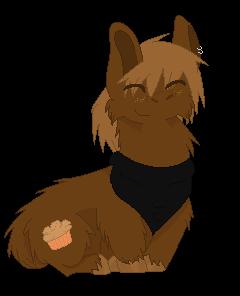 Muffin the Llama