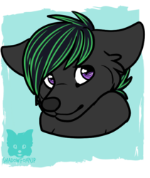 comm : $5 bust #17