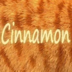 Most recent image: Cinnamon 12: Warrior Spirit