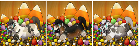 Jelly Beans <3