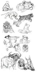 Sketchdump 11/02/14
