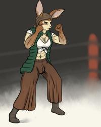 [c] - Fighter Bun 1