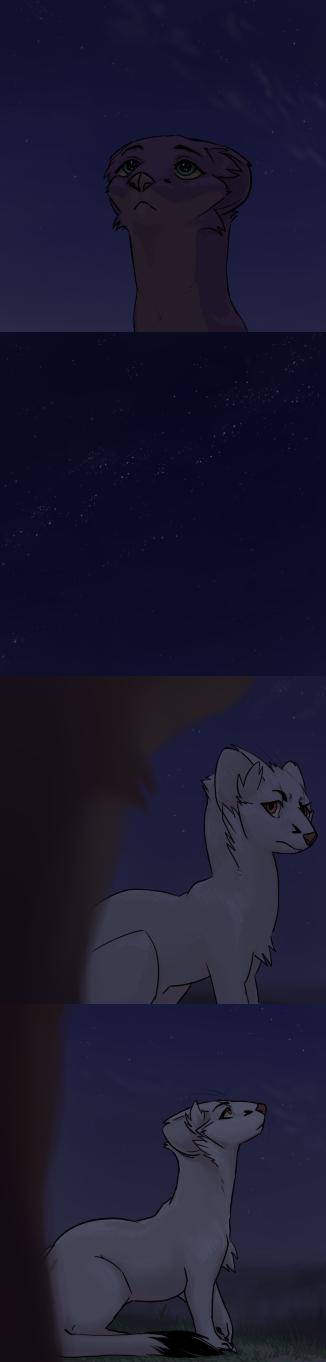 #032 starry night