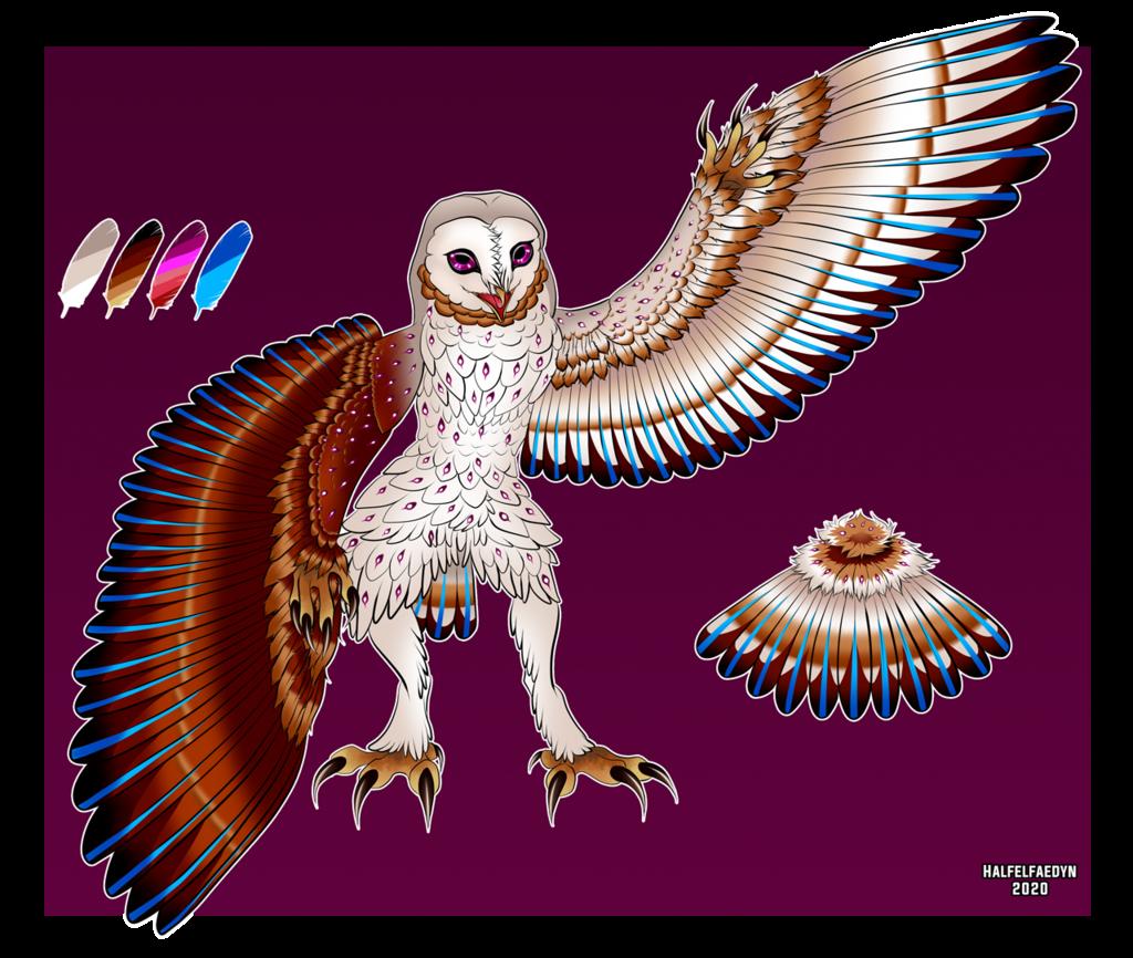 [SOLD] Barn Owl Adopt