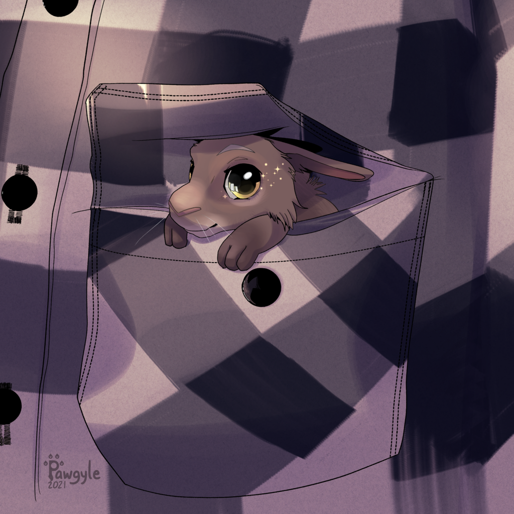 Chibi tiny rabbit in pocket