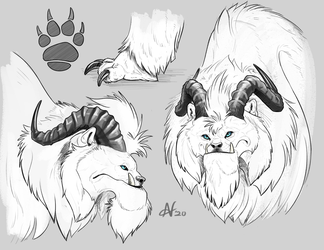 Yeti Hound Sketches