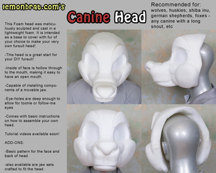 Canine Head Base
