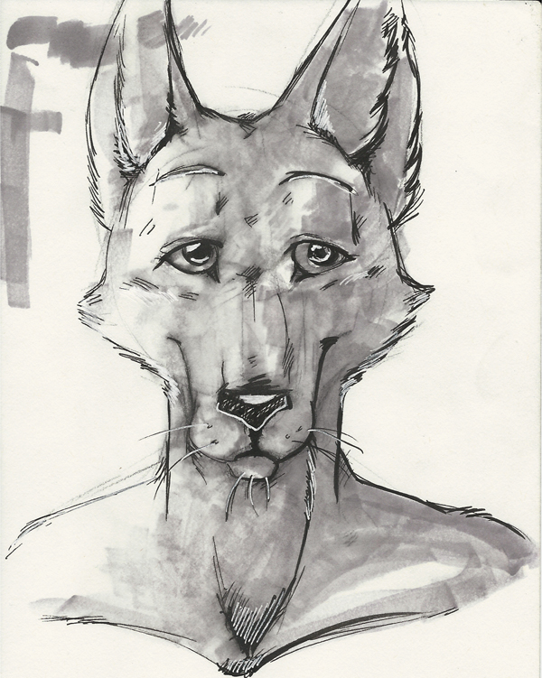 Featured image: Wolf Face