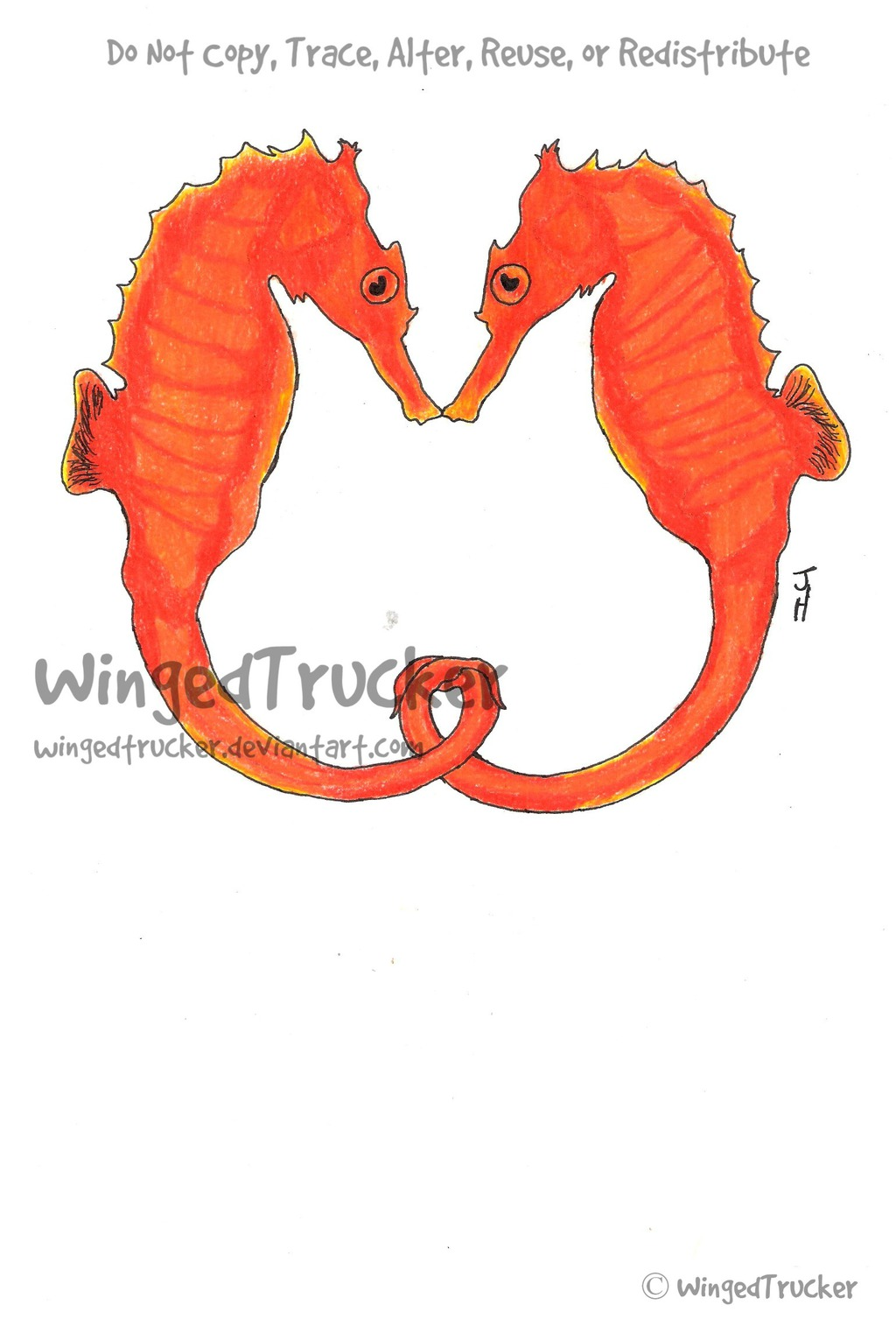 Most recent image: Seahorses Commission