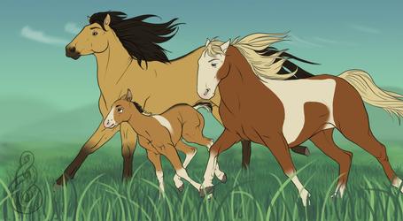 Spirit's Family