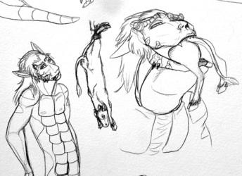 Sketches--Feeding Spider