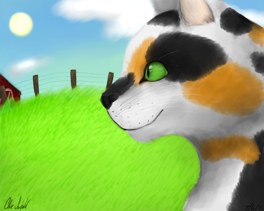 Calico Painting