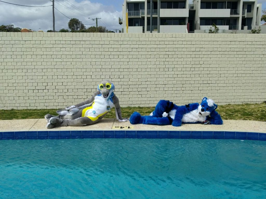 Poolside critters