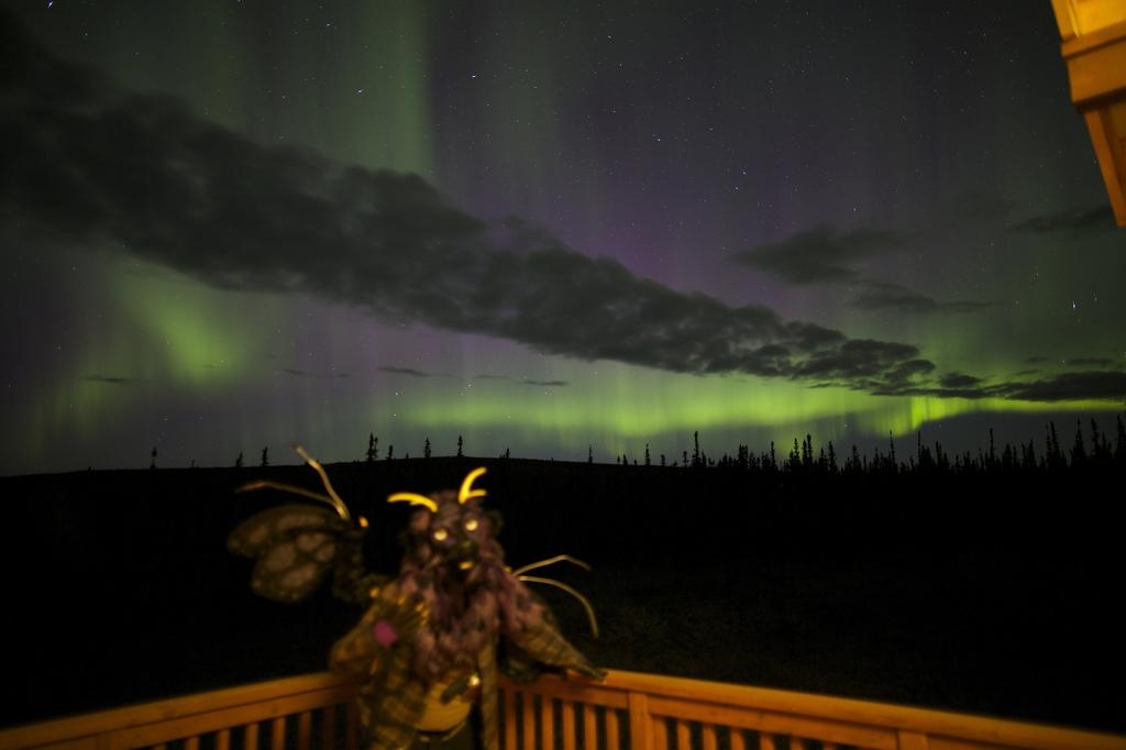 Northern Lights Kellashee