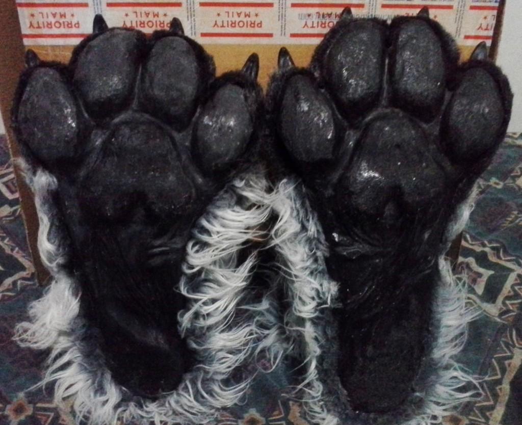 Dem Paws