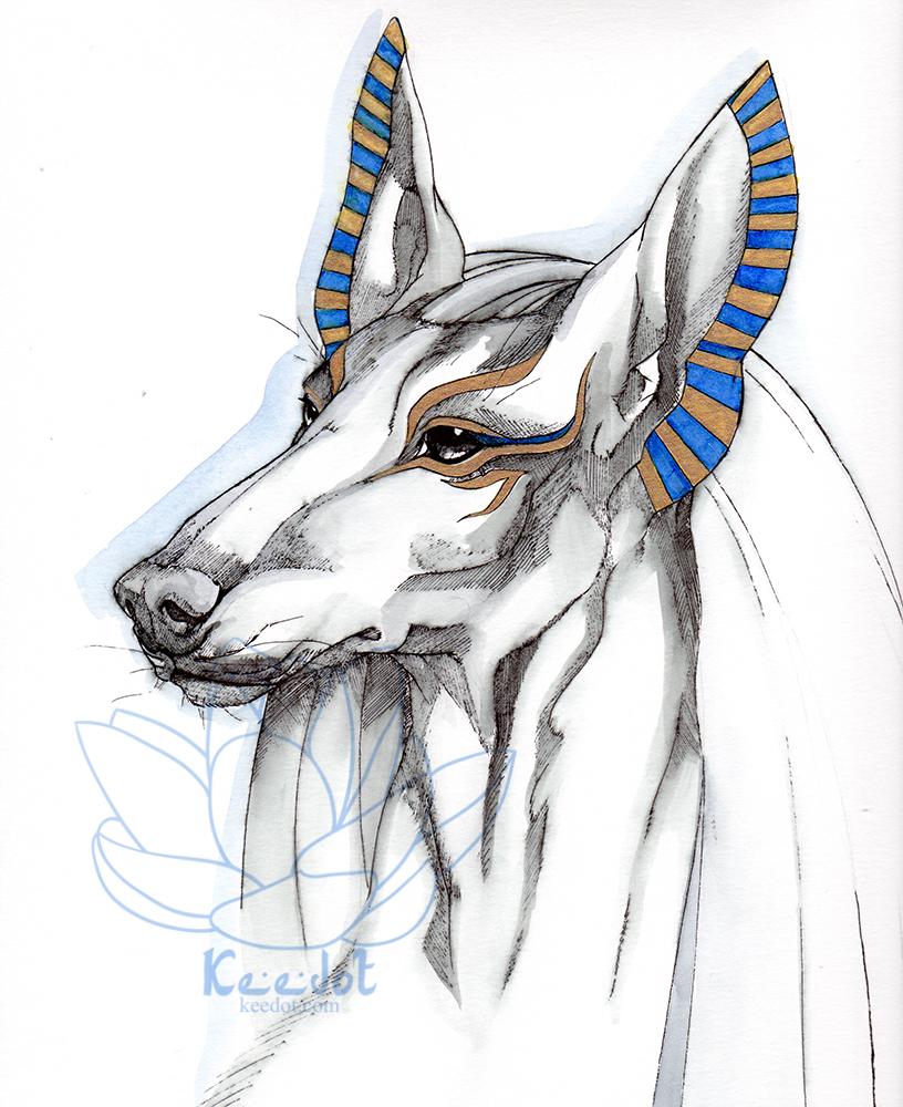Portrait of Anubis.