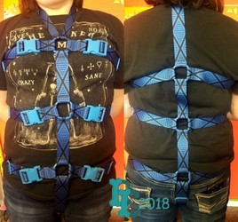 Body Harness