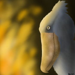 Shoebill and the Flames