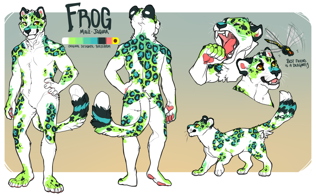 Most recent image: [comm] Frog Ref