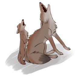 Howling Class