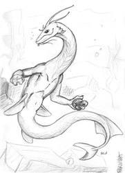 Dragon-whale Anthro