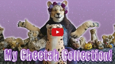 (Video) Shetani's Cheetah Collection!