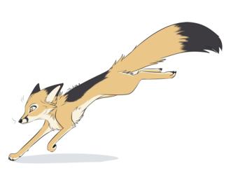 Swift Fox by Taykoe