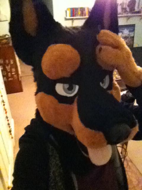 Most recent image: Doberman #2 Fursuit