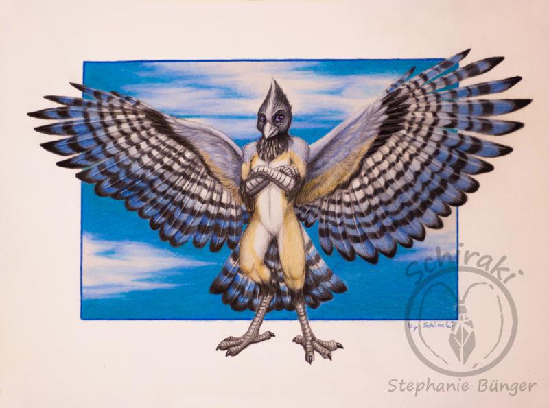 those blue wings