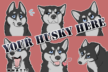 """Your Husky Here"" Recolorable Sticker Pack"