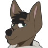 avatar of 9TailedJackal