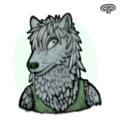 portrait for wolf momma