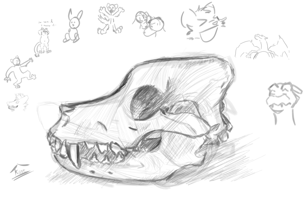Most recent image: Skull practice