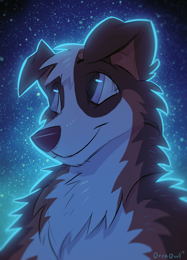 Most recent image: Night Collie