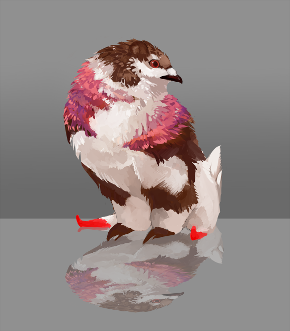 Taum owner: maresy