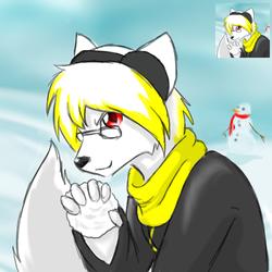 Xeros winter icon