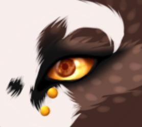 Bellz's Eye