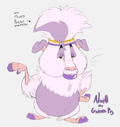 Noëll is here