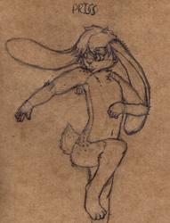 New Rabbit - Priss
