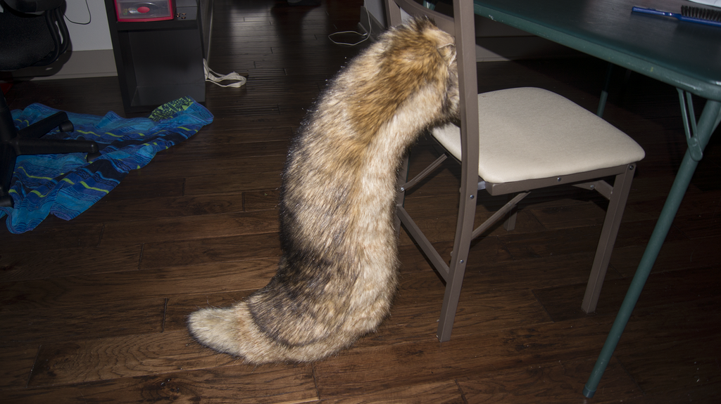 Fennec Tail - Finished (1 of 2)