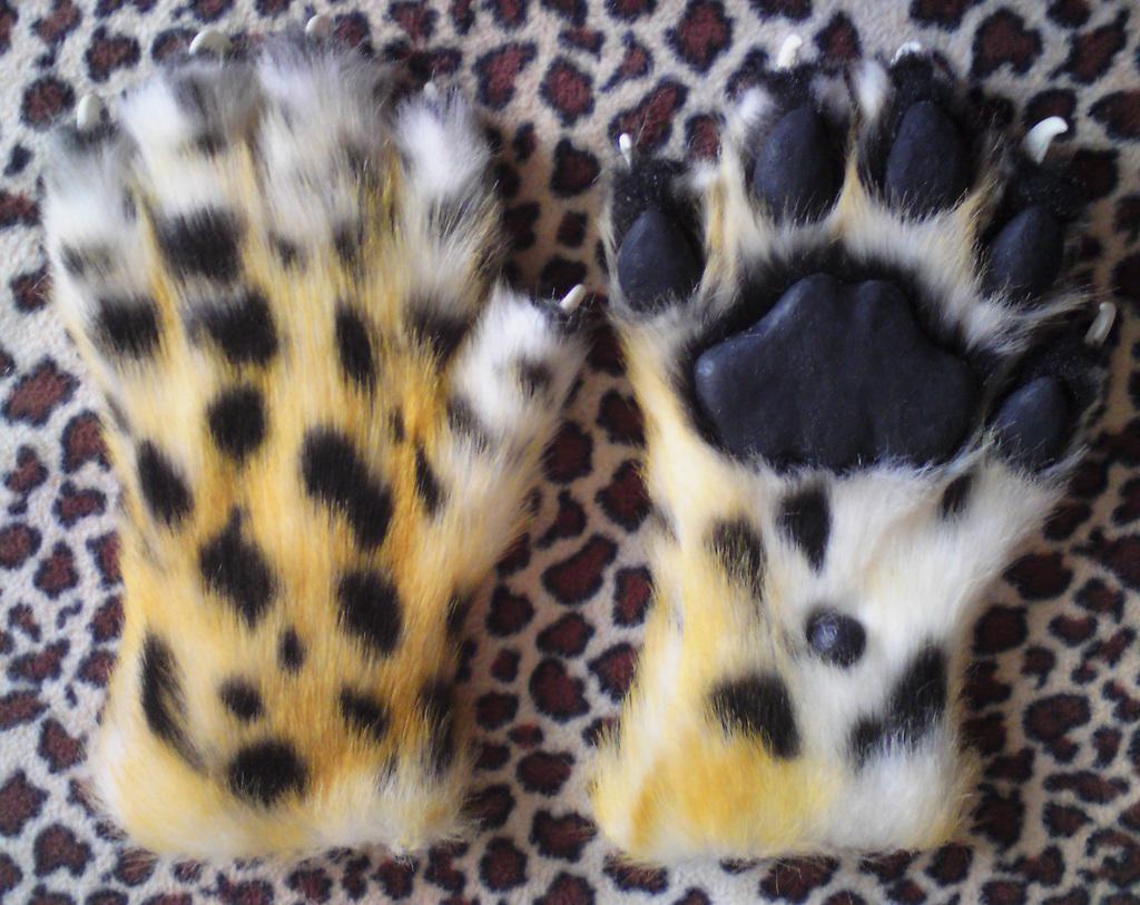 Amur leopard handpaws
