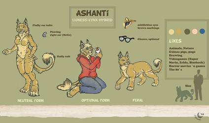 Charsheet Ashanti 2014