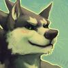 avatar of bcokami