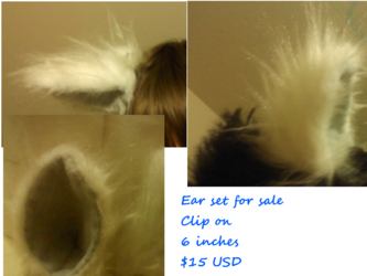 ears for sale