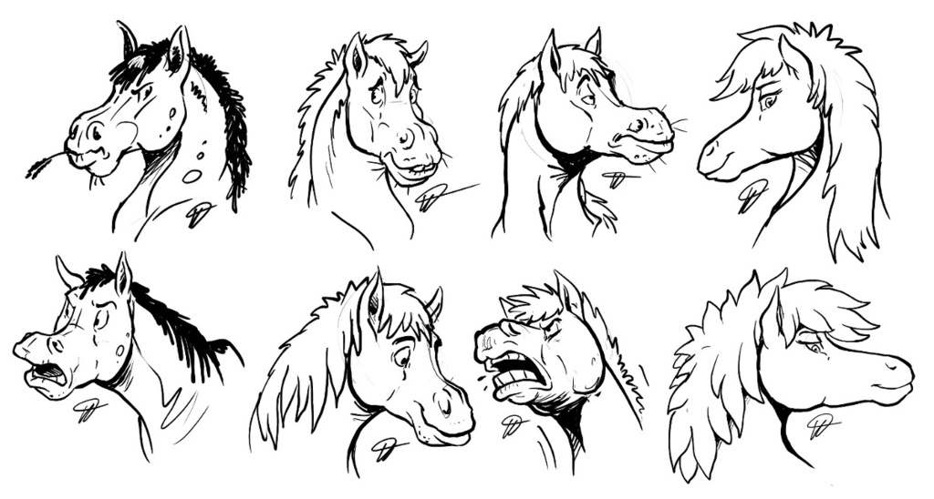Horse head sketches